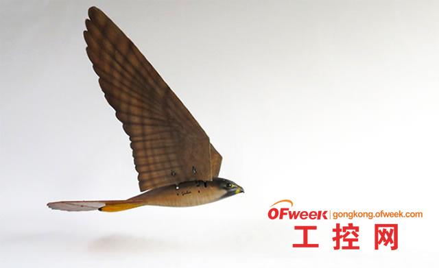 3D打印鸟形机器人